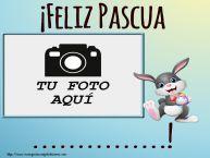 Personalizar tarjetas de Pascua | ¡Feliz Pascua ...! - Marco de foto