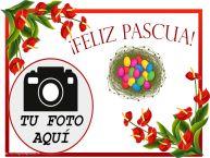 Personalizar tarjetas de Pascua | ¡Feliz Pascua! - Marco de foto