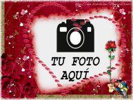 Personalizar tarjetas de San Valentín | Amor