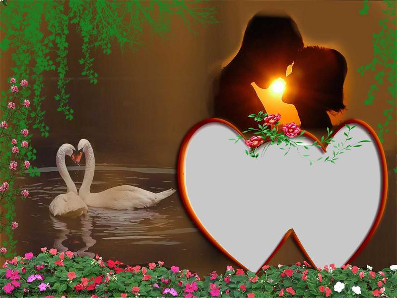 Personalizar tarjetas de amor | Amor