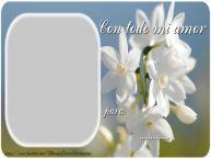 Personalizar tarjetas de amor | Con todo mi amor ...