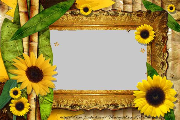 Personalizar tarjetas con fotos   Marco de la foto del girasol