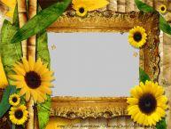 Personalizar tarjetas con fotos | Marco de la foto del girasol